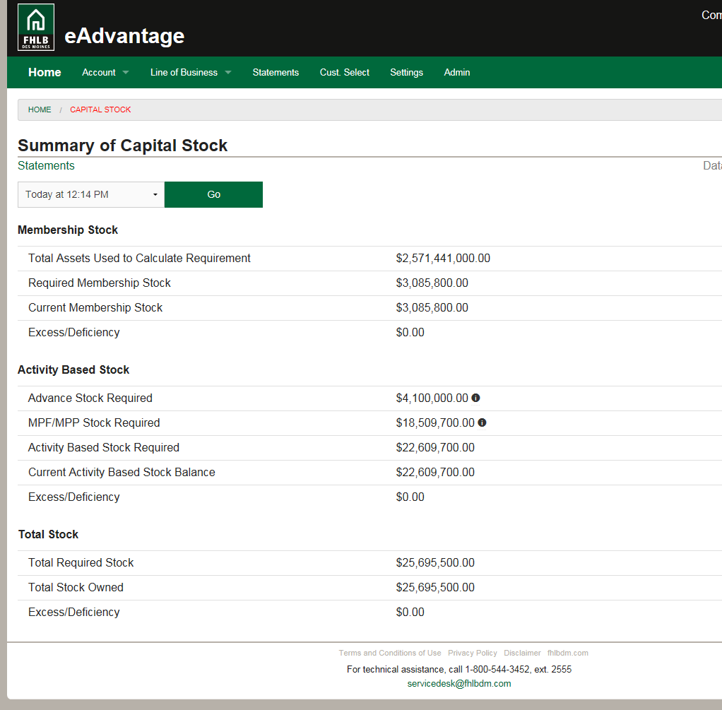summary of capital stock screenshot